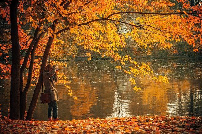 autumn-691263_640_mini