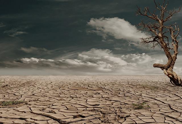 desert-279862_640_mini